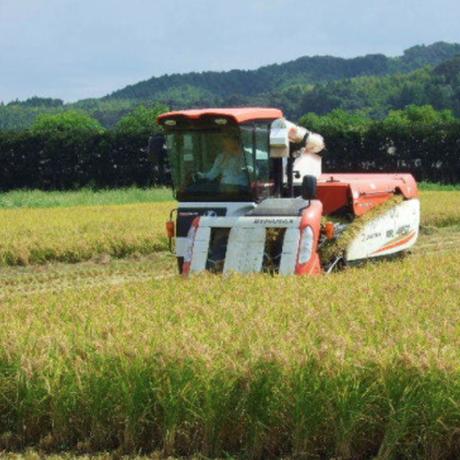 安心・安全なお米、野菜、パン、お惣菜が買える「黒川農園」in徳島