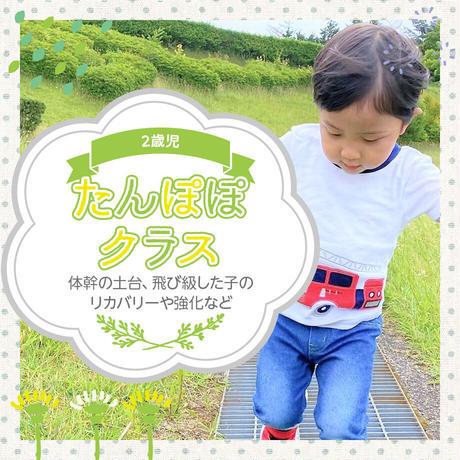 2121.5.9 3歳児「たんぽぽクラス」体幹強化プログラム