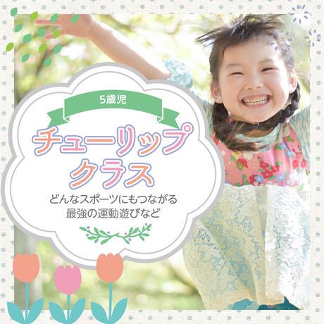 2121.5.9 5歳児「ちゅーりっぷクラス」体幹強化プログラム