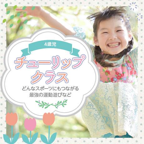 2121.5.9 4歳児「ちゅーりっぷクラス」体幹強化プログラム