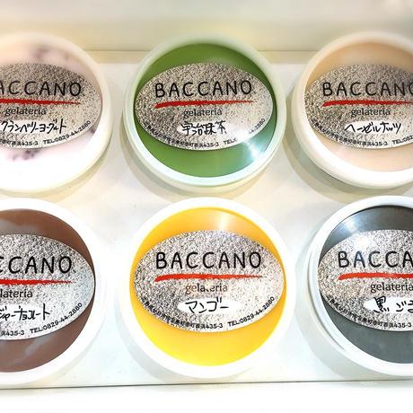 BACCANO ジェラート12個セット(130ml×12個)