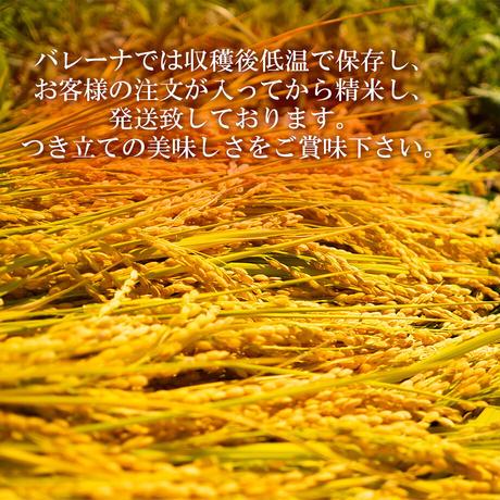 [新米] 精米5kg×6ヵ月  令和3年度南魚沼塩沢産コシヒカリ「金城米」
