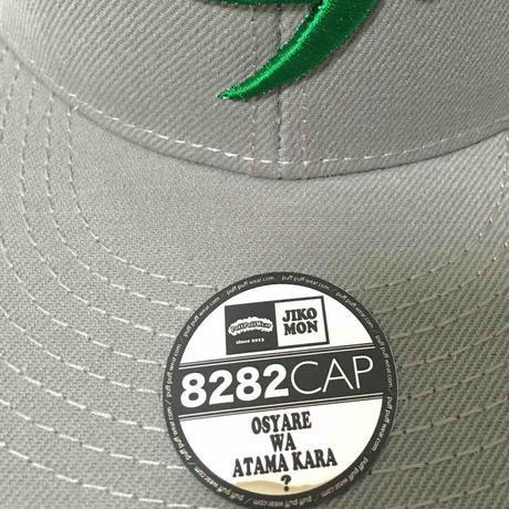 【3D刺繍】パフ SNAPBACK CAP(GRAY/GREEN)