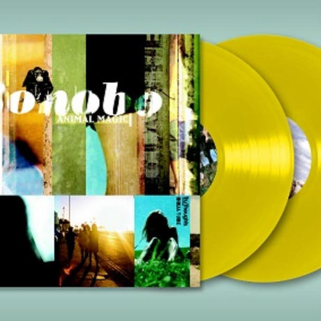 8月上旬 - Bonobo / Animal Magic [2LP] -Yellow Vinyl-