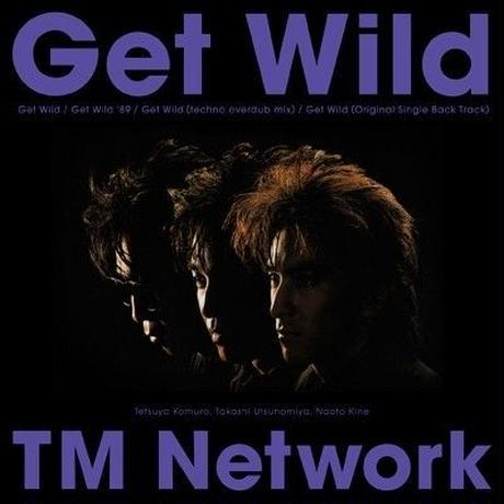 TM NETWORK / Get Wild [LP]