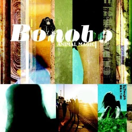 Bonobo / Animal Magic [2LP] -Yellow Vinyl-