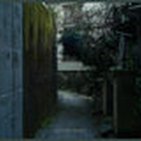 BudaMunk / The Corner [CD]