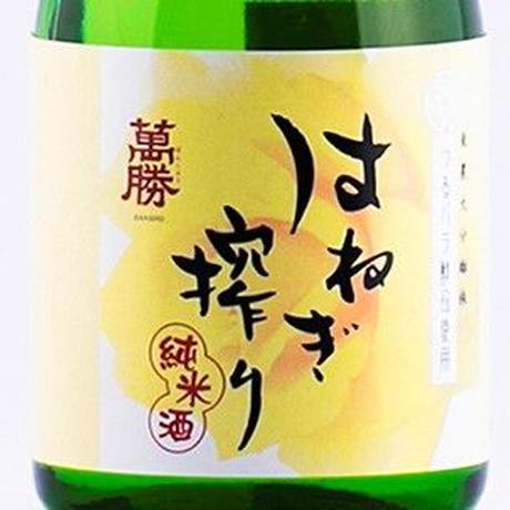 ギフトセット はねぎ搾り 純米吟醸・純米 300ml×2本入り [GFT-HNG300×2]