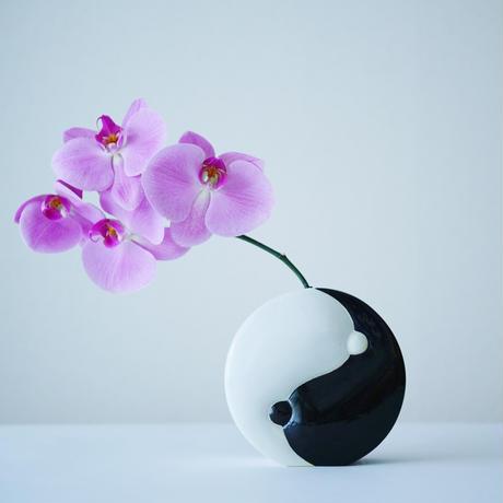 BANZAI×KOTARO SAKAZUME/ CHIBUSA YING YANG FLOWER VASE