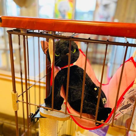 【猫用ハンモック ブルー/ピンク】サークルに取り付けができる猫専用ハンモック!お部屋のインテリアに…安定感抜群