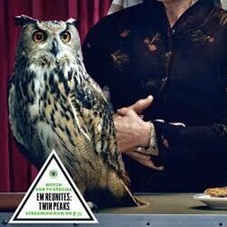 Owl Symbol ゴムハンコ