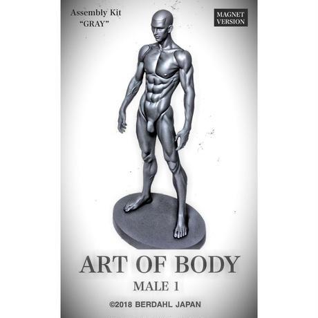 ART OF BODY MALE1(組立キット)色:グレー [マグネット版]※Japan only