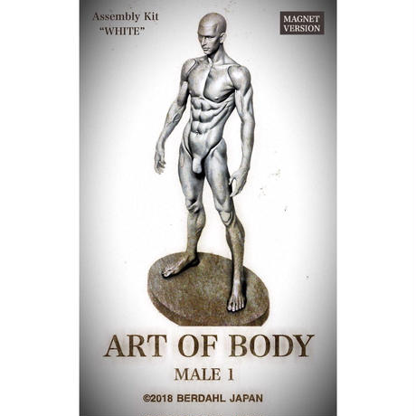 ART OF BODY MALE1(組立キット)色:ホワイト [マグネット版]※Japan only