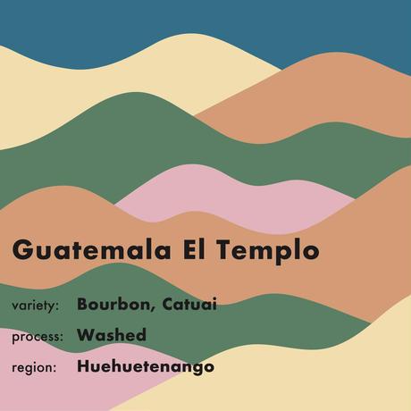 GUATEMALA  El Templo コーヒー豆 150g