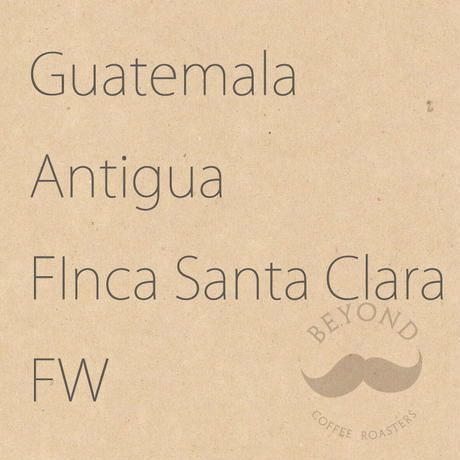 Guatemala Antigua Finca Santa Clara FW - 200g