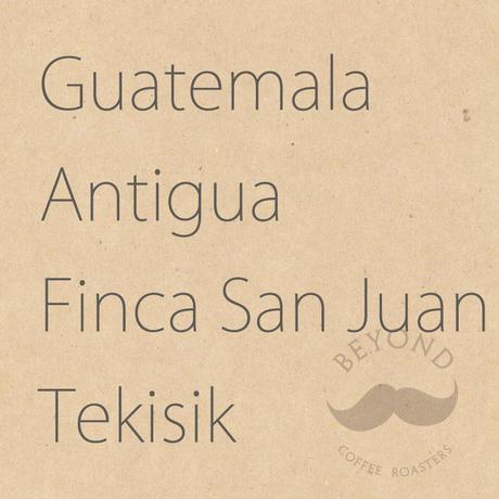 Guatemala Antigua Finca San Juan Tekisik - 200g