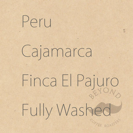 Peru Cajamarca Finca El Pajuro Fully Washed - 200g