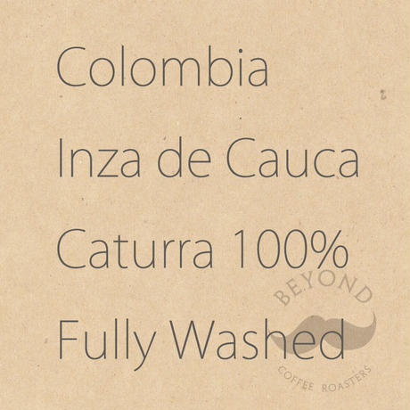 Colombia Inza de Cauca Caturra Fully Washed - 200g