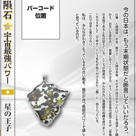超隕石の宇宙最強パワー 銀座で働く隕石王子の桁違い銀河ビジネス術