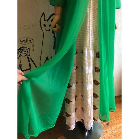 lady's green color sheer maxi length dress