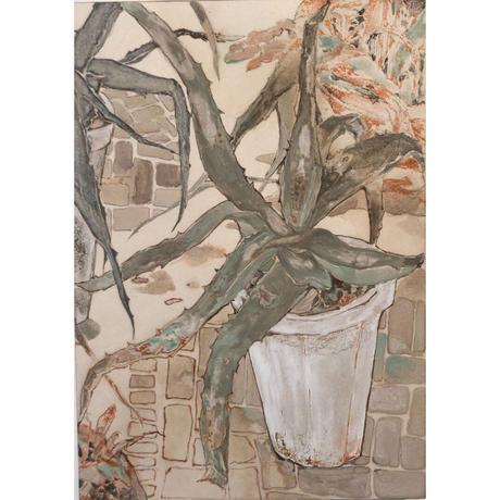 小河彩乃 「ornamental foliage plants Ⅲ」