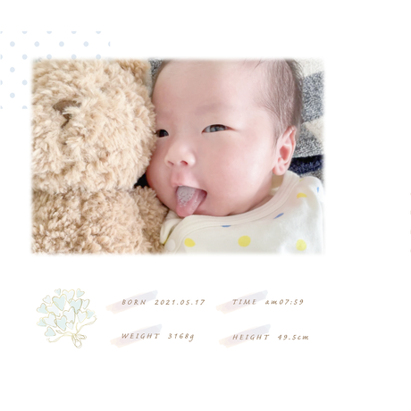 バースリースオリジナル 等身大エコーアルバム(産後の方のみ)