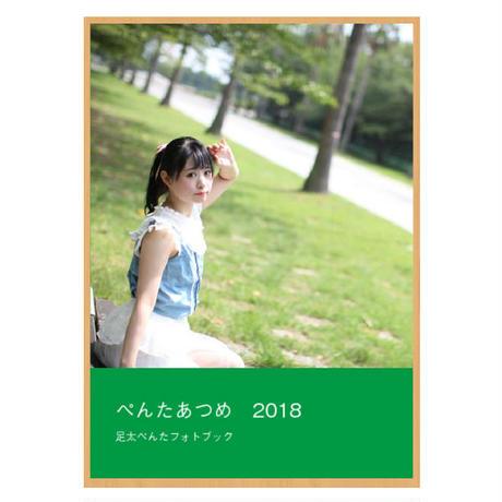 フォトブック『ぺんたあつめ2018』
