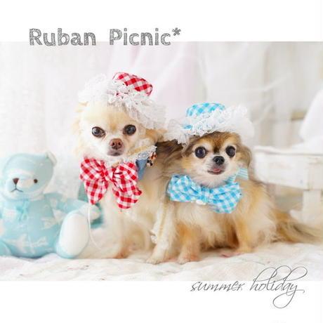Ruban  picnic gingham