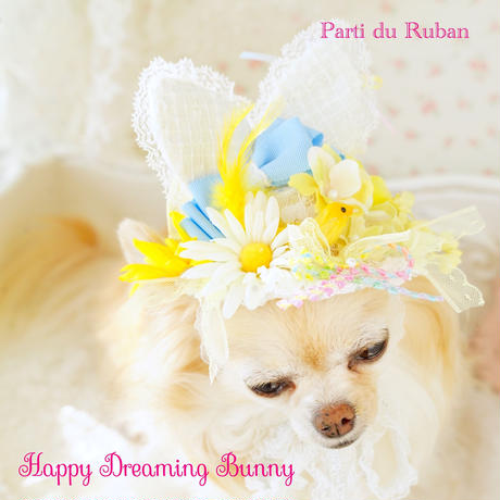 Happy Dreaming Bunnyyellow