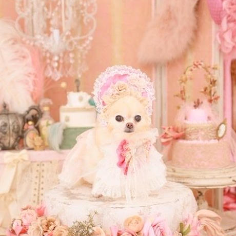 Rose Parfum ハーフボンネット