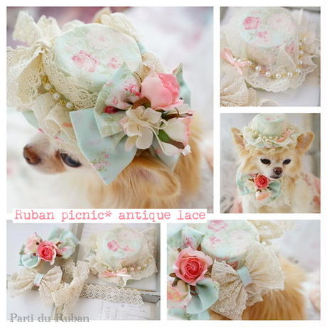 Ruban  picnic antique lace