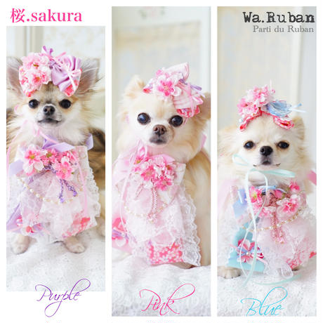 《Wa.Ruban 》桜.sakura ブルー チョーカー&ヘッド飾り
