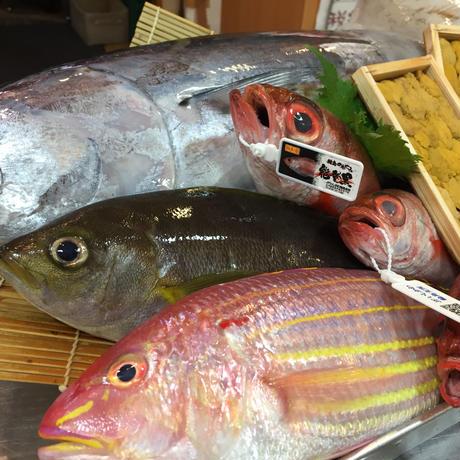宇和海の旬の鮮魚詰め合わせ 市場直送ボックス 1万円コース