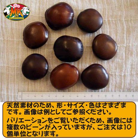 【JY様専用】世界で一番大きな豆 幸せを呼ぶ「ズールーラブビーン」(モダマ)セット