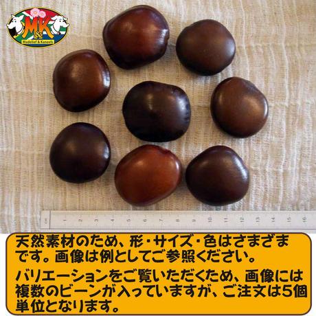 【送料無料】世界で一番大きな豆 幸せを呼ぶ「ズールーラブビーン」(モダマ)ばら売り 5個単位