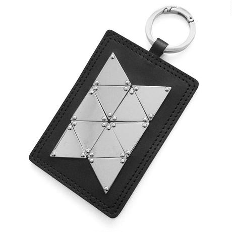 TRIANGLE plate pass case
