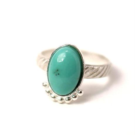 ring/S16-S1-0020