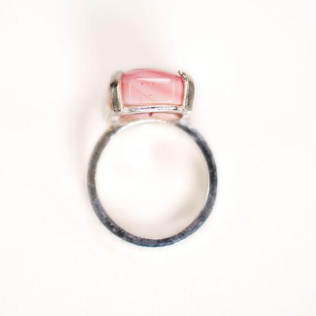 ring/S19-S1-0220