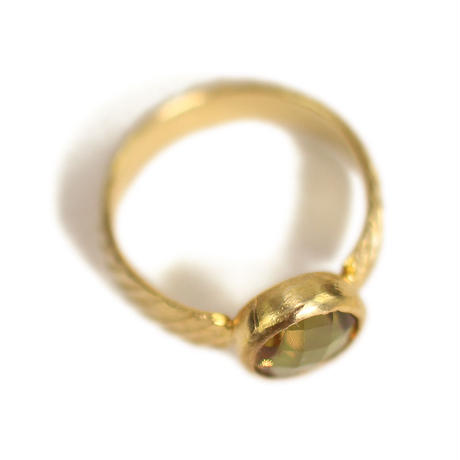 ring/S19-A0-0121