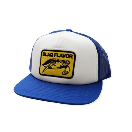 Turtle Mesh Cap