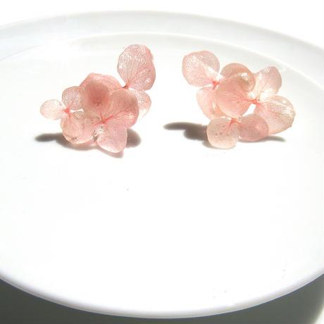 ピンク紫陽花のピアス