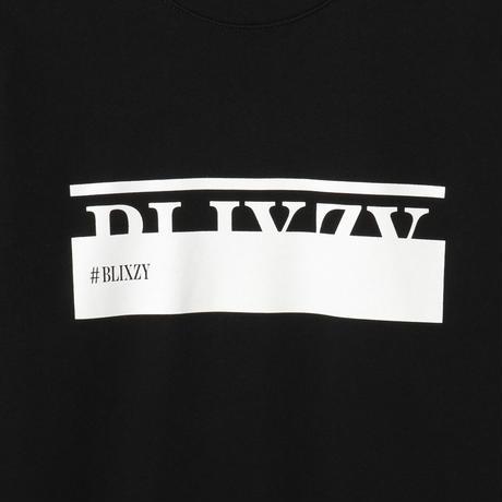 #BLIXZY TRAINER