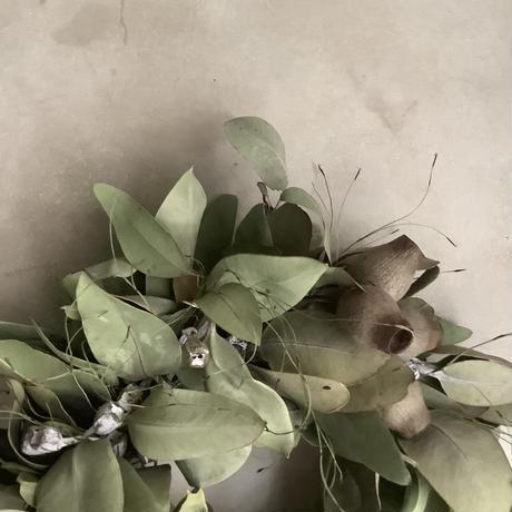 3mixed eucalyptus wreath (3種のユーカリミックスリース)