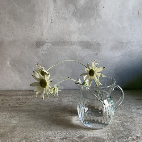 2021 Couler ligne herb water carafe (クーレライン・ハーブウォーターカラフェ)