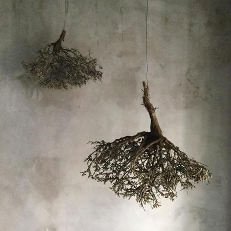 Dried Tree Bush C (ドライツリーブッシュC)