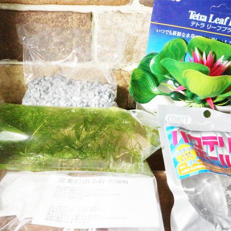 2032050910518鉢飼育セット(袋)