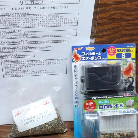 2032050912000ザリガニ研究Aセット(1ケース)