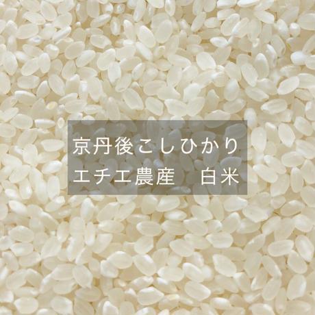 京丹後こしひかり エチエ農産 白米 5kg(有機JAS認証)