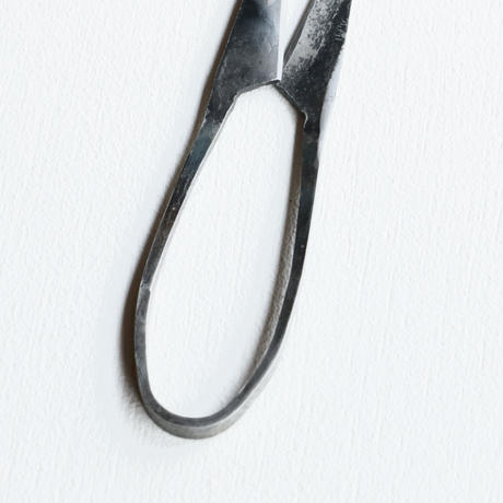 TAjiKA / HERB SHEARS
