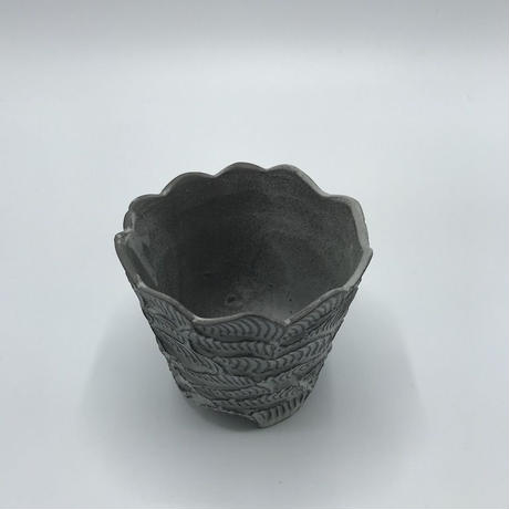 MOVE 4-M  / BPA-0041